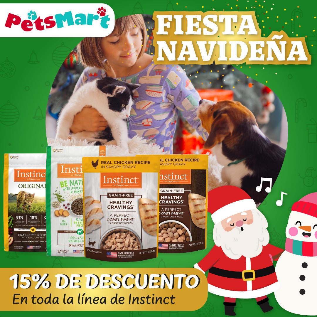 Anuncio_FiestaNavideña5