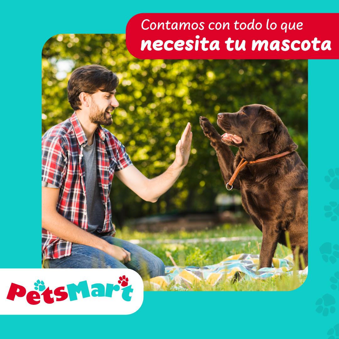 Layout_PetsMart_10