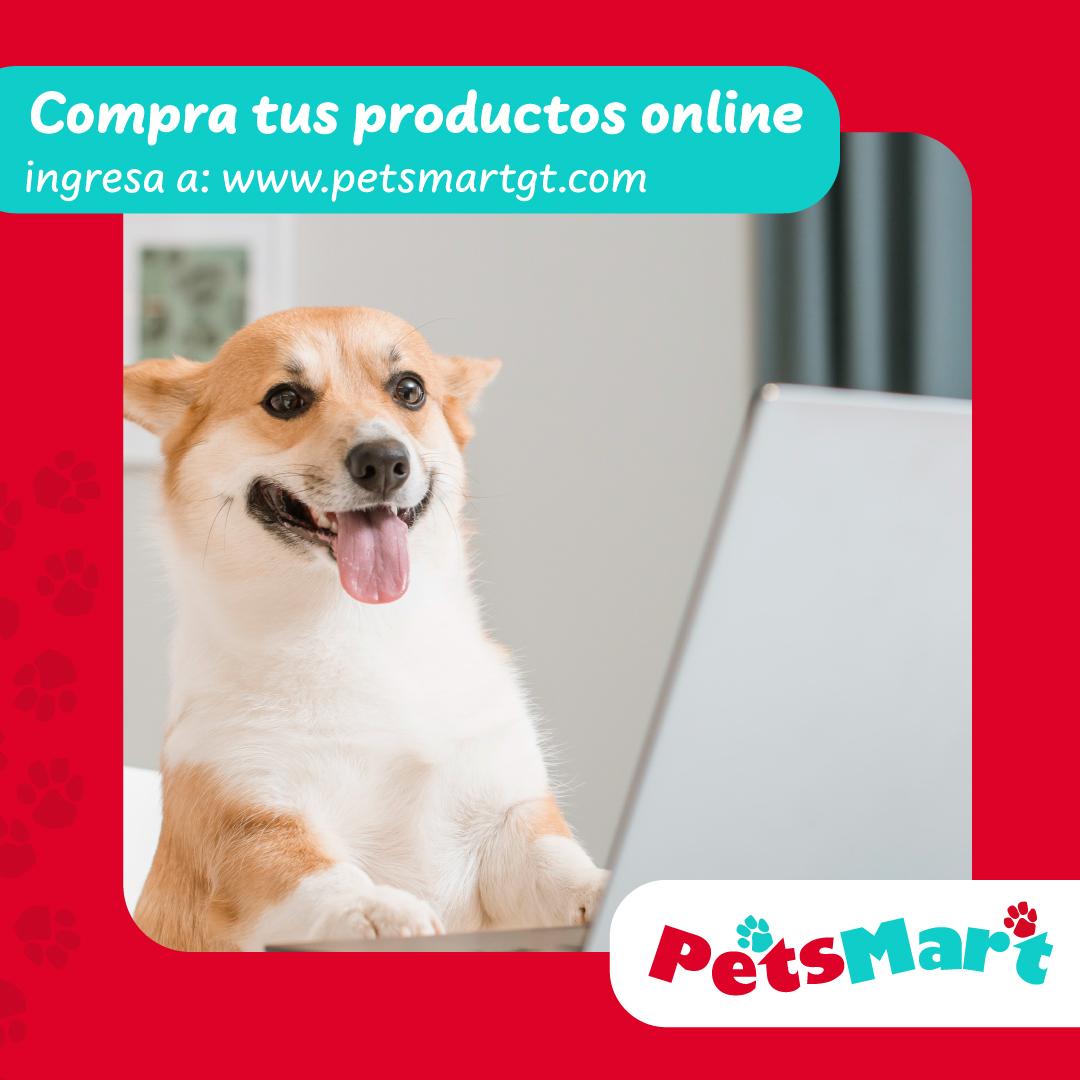 Layout_PetsMart_6
