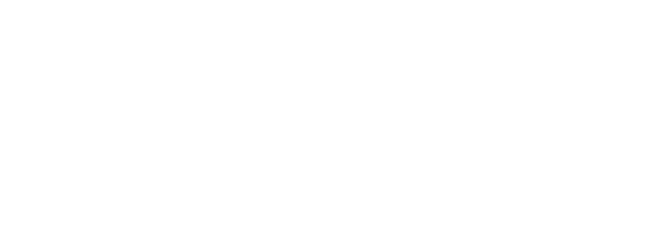 Disguate